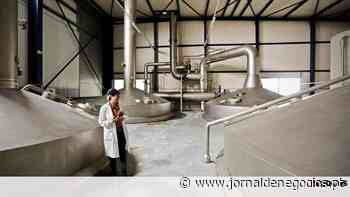 Font Salem põe espanhóis a beber cerveja de Santarém - Jornal de Negócios - Portugal