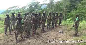 Autodefensas Gaitanistas asesinan a habitantes de Nechí (Antioquia) y Montecristo (Bolívar) - Noticias Nacionales - Radio Macondo