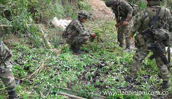 Ocho soldados heridos al caer en un campo minado en Montecristo, Bolívar - La Opinión Cúcuta