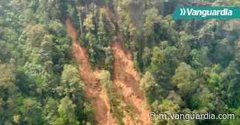 Se registran más de 14 derrumbes en zona rural de Floridablanca - Vanguardia