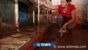 El drama de los damnificados tras creciente de río en Santander - El Tiempo