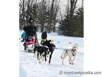 Pincourt holds outdoor Winterfest bash at Parc Olympique - Montreal Gazette