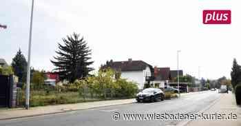 SPD fordert Bau von Mietwohnungen in Oestrich-Winkel - Wiesbadener Kurier
