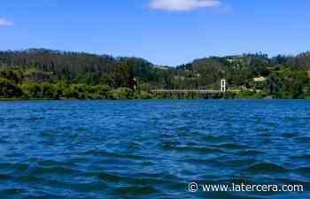 Carahue navegable: la ruta fluvial que le devuelve el esplendor al río Imperial - latercera.com