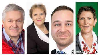 Runder Tisch - Die Kandidaten der Burgstadt Heidenreichstein - NÖN.at