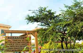 IX Feria gastronómica, turística y artesanal en Cogua - Extrategia Medios
