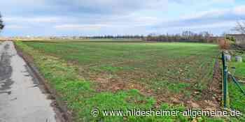 In der Gemeinde Harsum sollen neue Baugebiete entstehen - www.hildesheimer-allgemeine.de