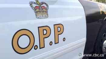 Pedestrian struck by vehicle in Lambton Shores - CBC.ca