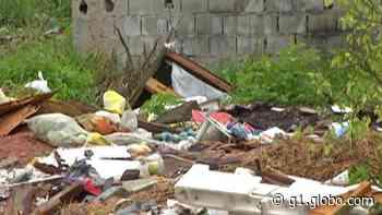 Terreno da Prefeitura de Ferraz de Vasconcelos vira ponto de descarte irregular de lixo e incomoda moradores - G1