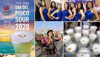 Día del Pisco Sour 2020 en Paracas es con reina, pasacalle y degustación - Viajando por Perú