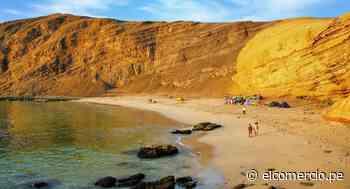 Paracas: balneario de Ica espera recibir un millón de turistas el 2020   FOTOS - El Comercio - Perú