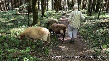 Diese Frau lebt mit vielen Tieren und pflegt mit ihnen ein besonderes Hobby - Gießener Allgemeine