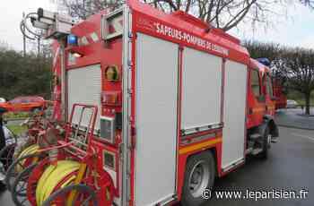 Chilly-Mazarin : une crèche de Noël prend feu dans un appartement - Le Parisien