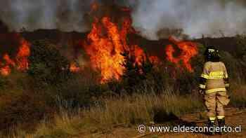 Onemi declara alerta roja en Temuco, Lumaco y Pitrufquén por incendios forestales - El Desconcierto