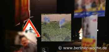 Parteien ignorieren Verwarnung: Bernau bei Berlin lässt 120 Wahlplakate abhängen - Umland Nord - Berliner Woche