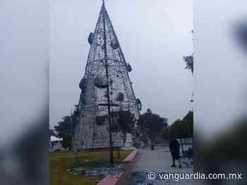 Les queman árbol de Navidad a pobladores de Atitalaquia, Hidalgo - Vanguardia MX
