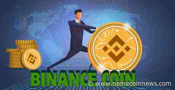Binance Coin (Bnb) Price Movement Exhibits a Huge Drop - NameCoinNews