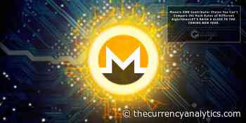 Monero XMR Contributor States You Can't Compare the Hash Rates of Different Algorithms - The Cryptocurrency Analytics