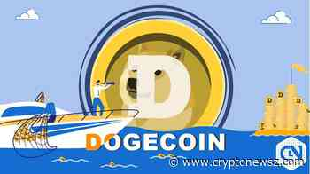 Dogecoin (DOGE) Records 5.79% Fall Due to Market Pressure - CryptoNewsZ