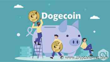 Dogecoin (DOGE) Indicates Moderate Loss Over a Day - CryptoNewsZ