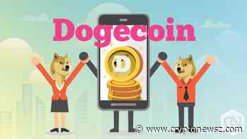 Dogecoin (DOGE) Gains 2.71% in the Last 24 Hours - CryptoNewsZ
