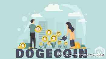 Dogecoin (DOGE) Indicates Positive Traits of Price Rally - CryptoNewsZ