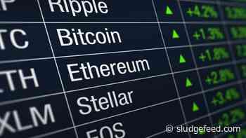 Sunday Crypto Market Gainers: BTMX, ICX, SEELE, GNT, MATIC - SludgeFeed