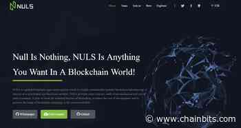 Nuls (NULS) Review – The First Highly Customizable Blockchain Infrastructure - ChainBits