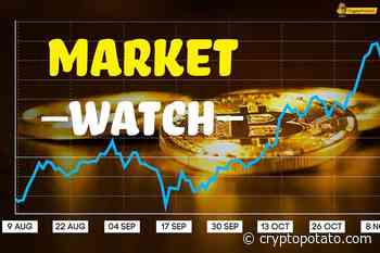 Bitcoin SV (BSV) Skyrockets 20% While The Green's Back Into The Market: Crypto Monday's Watch - CryptoPotato