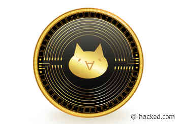 MonaCoin (MONA) Surges 208% in a Day: Instant Top 50 for Meme Crypto - Hacked