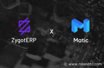 Leading ERP Company Zygot Partners with Matic Network for Instant and Free Transactions - newsBTC