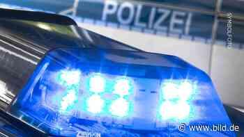Kreis Herzogtum-Lauenburg - Leiche in der Elbe gefunden - BILD