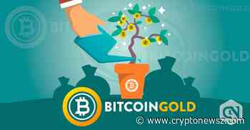 Bitcoin Gold Price Analysis - BTG Predictions, News and Chart - May 28 - CryptoNewsZ