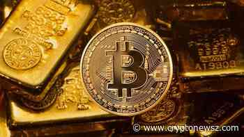 Bitcoin Gold (BTG) Price Analysis : Review on Bitcoin's Hard Fork – Bitcoin Gold's Enhancing Mar ... - CryptoNewsZ
