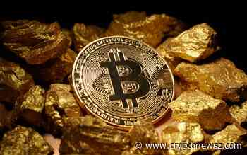 Bitcoin Gold (BTG): Price Analysis, Dec. 11 - CryptoNewsZ