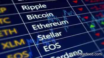 Sunday Crypto Market Gainers: VGX, LA, POLY, BTT, IOST - SludgeFeed