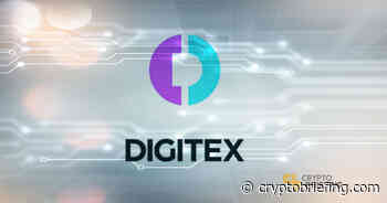 What Is Digitex Futures Exchange? Introduction to DGTX Token | Cryptocurrency News - Crypto Briefing