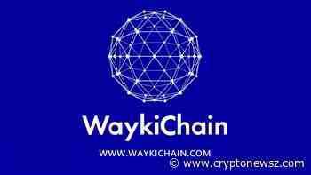 WaykiChain(WICC) Stablecoin Connects Decentralized World with Application Ins and Outs - CryptoNewsZ