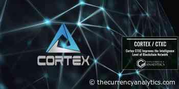 Cortex CTXC Improves the Intelligence Level of Blockchain Network - The Cryptocurrency Analytics