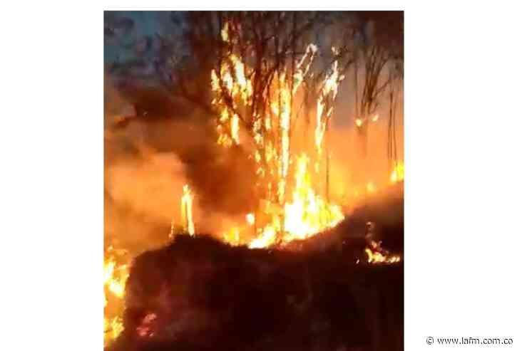 SOS en Nimaima por hectáreas consumidas por incendio forestal - La FM