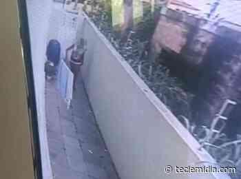 Foragido é preso por invadir casas em Sete Lagoas, Matozinhos e Pedro Leopoldo - Tecle Mídia