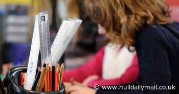 Newbald Primary School - Hull Daily Mail