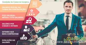 Vendedor de Comércio Varejista - Salário 2020 - Aguai, SP - salario.com.br