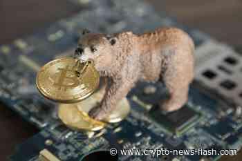 Novogratz: Bitcoin wird 12.000 USD erreichen, wettet 1 Ethereum (ETH) auf Trump - Crypto News Flash