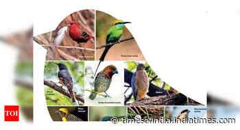 Govt proposes 10-yr comprehensive plan for birds' conservation