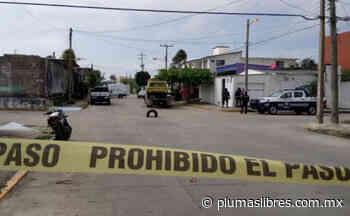 Matan a mujer tras resistirse al asalto en colonia Buenavista del puerto de Veracruz - plumas libres