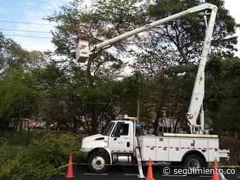 Pivijay y 9 corregimientos de El Piñón estarán sin luz este martes por trabajos de mantenimiento - Seguimiento.co