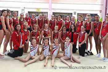 Fecamp. Les gymnastes du Bois-Rosé en compétition Fédéral C à Louviers - Le Courrier Cauchois