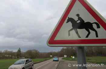 Saulx-les-Chartreux : après l'accident de cheval, les cavaliers attendent une sécurisation de la D118 - Le Parisien