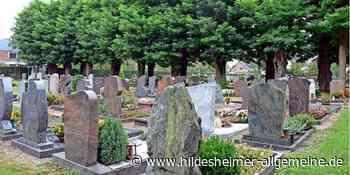 Bald auch Baumbestattung in Harsum möglich - hildesheimer-allgemeine.de